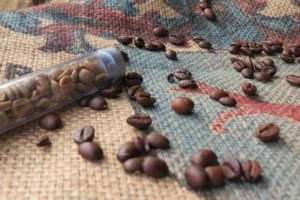grüne Kaffeebohne zum Abnehmen